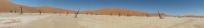 deadvlei panorama