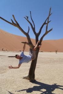 treehanging deadvlei